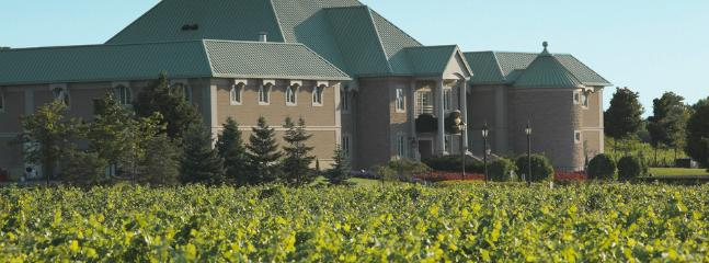 Chateau Des Charmes Winery - just down the road!