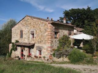agriturismo dondoli bio farmhause rosa, Panzano in Chianti