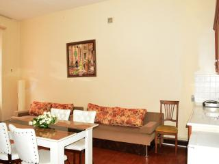 3 BDR CITY CENTER FLAT, Istambul