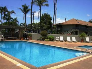 Kihei Bay Surf #126 studio great rates! Sleeps 3