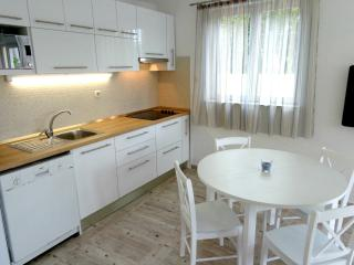 Apartment in center of town Vis 4*