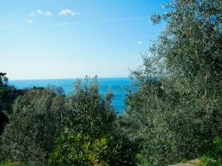 Brand  new  3   bedrooms  seaview  apartment, Bonassola
