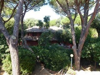 Villa Picci  a pochi minuti a piedi dal mare!