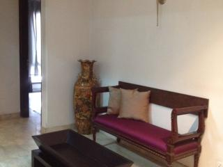 3BD Fully Furnished Modern Serene Appartment N.F.C, Neu-Delhi