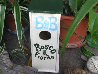 Bosco Fiorito Lago Maggiore