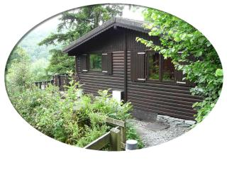 Boltons Tarn Luxury Log Cabin