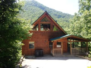 "Spring BOGO 4 night min April & May!! 1/1ba -""Alone Time Close to National Park, Pigeon Forge"
