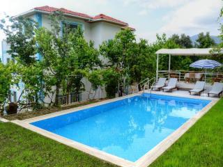 Holiday villa in Uzumlu Kalkan , sleeps 10: 067