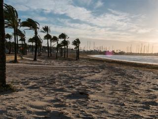 9. Planta baja a 50 m. de la playa, El Arenal