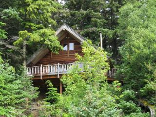 Paradise West Log Cabin with beach access, sauna, Haines