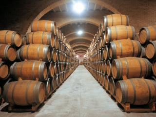 Casa en Jumilla, Visitas Bodegas, Vinos y Viñedos