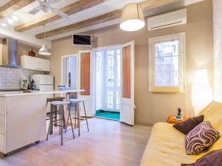 Bohemian 2 bedroom flat in the city centre, Barcelona
