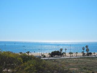 WiFi apartm on the first line_Rafal 43_4, Torrevieja