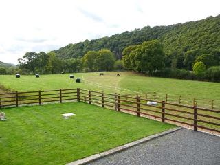 CWMDU COTTAGE, detached, open plan living area, ample parking, garden, near Newcastle Emlyn, Ref 920784