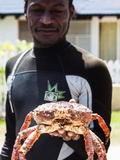 Meet Sam, our local fisherman. Lobster, crab, and fresh seafood at your door daily.