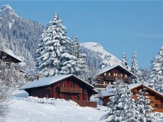 SUPERBE CHALET FAMILIAL EMPLACEMENT FABULEUX, Leysin
