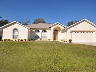 Palm Tree Villa Florida, 5 Star Review Rating with Pool Lift & Wheel in Shower., Kissimmee