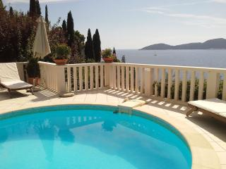 Amazing sea view villa with special offer, Trsteno