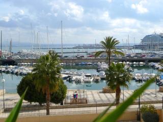 Palma Vista