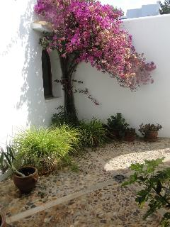 private courtyard outside main front door