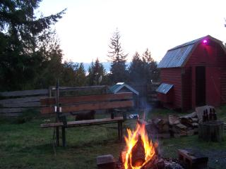 Private Hilltop Cottage  HotTub/PetFriendly, Sooke