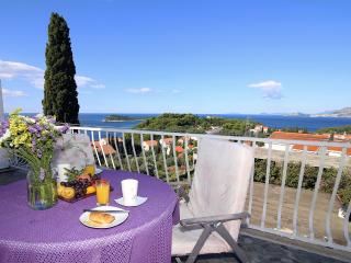 Apartment VIEW-big terrace,jacuzzi,fantastic view, Cavtat