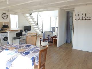 Appartement T3 Duplex style loft 80 m² rénové, Barcelonnette