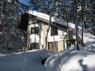 Cedar Ridge Cottage - If you want serious powder!, Hakuba-mura