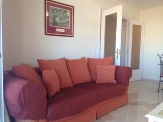 The large comfortable sofa