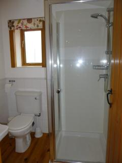 Large Shower Room