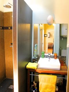 The Shower Room seen from Hall