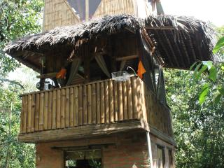 The Bird Tower, Mindo