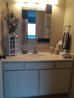 The master bath has plenty of vanity space, storage for personal belongings and a relaxing shower.