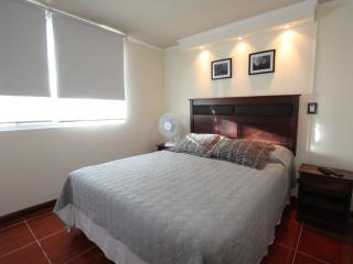 Family apartment /walking distance subway, Santiago