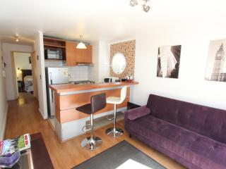 Walking distance / Subway/ restaurant /Big terrace, Santiago