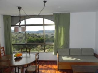 Apartamento Pirineos, El Grado