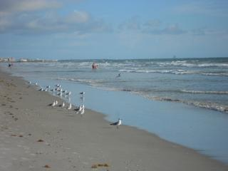 Cocoa Beach Florida Sandcastles