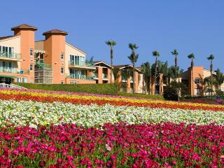 Grand Pacific Palisades Resort, Carlsbad