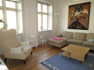 Lovely Copenhagen apartment at the harbour at Nyhavn
