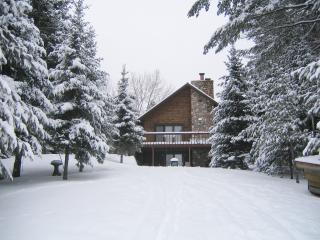 Chain Lake Log Lodge West of Eagle River-Trails, Hiking, Biking, UTV, Snowmobile