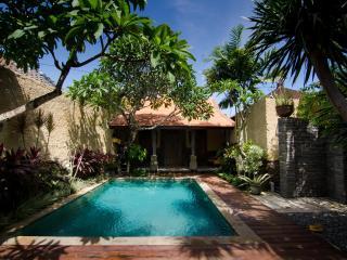 Villa Nesanur - Beautiful and comfortable combined