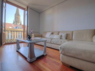 300 m from Concha Beach + PARKING (optiona)+WIFI, San Sebastian - Donostia