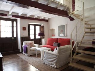 beautiful apt. in historical place (2+ children), Pasarón de la Vera