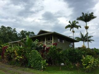Artist's & Writer's home on Hawaii's Big Island