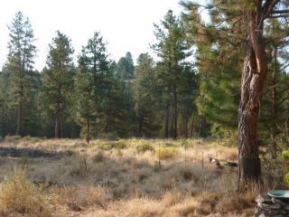 Tumalo Pines