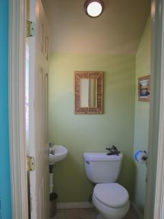 Half bathroom downstairs