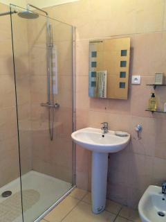 Modern bathroom with walk in shower , hand basin and bidet. There is a separate wc.