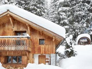 Magical Winter Wonderland Chalet - Argentiere