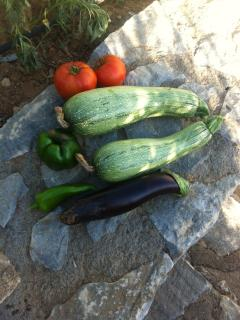 Some organic products from our garden