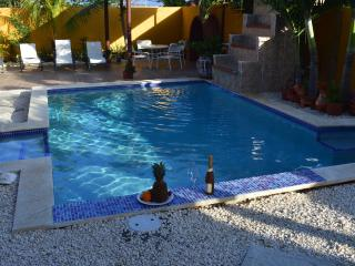 Comfortable apartment with pool, Noord